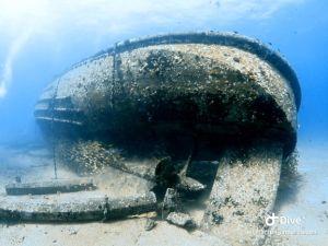 wreck - navy tug (3)