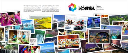 discover-korea-failed-cover2