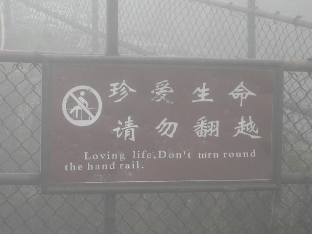 """Loving life. Don't turn round the hand rail."""