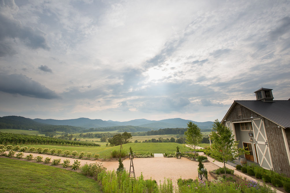Pippin Hill Farm Wedding by Photographer Aaron Watson