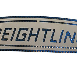 Grill Freightliner Logo  Part#: 030019.1.0.6   $65 each