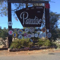 AAUW Paradise branch members need your help