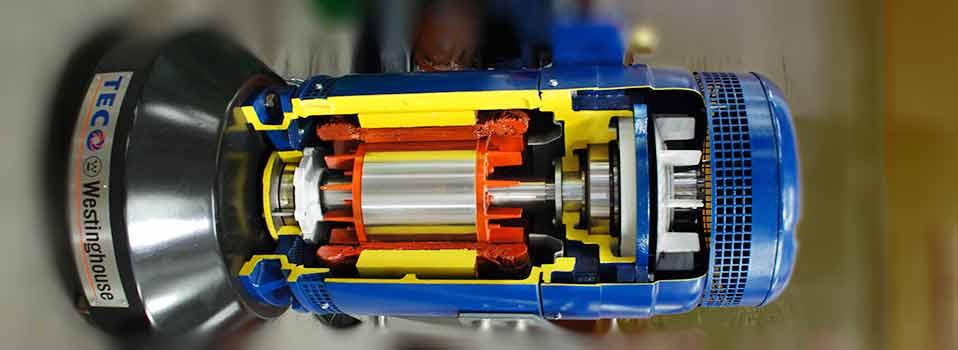 Vertical Hollow Shaft Motor  impremedianet