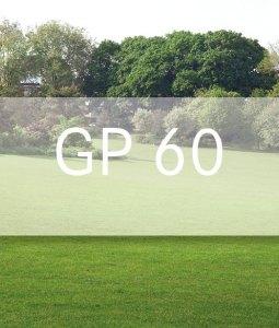 Gp kg