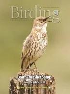 Birding Online: March 2014