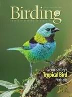 Birding Online: December 2015