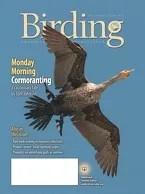 Birding Online: June 2016
