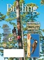 Birding Online: August 2016