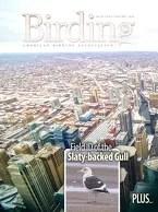 Birding Online: November 2014