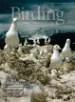 2005 Birding Archive & Web Extras