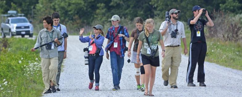 ABA Young Birder Camps
