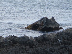 The visible part of the center section of the SS Hesleyside Wreck.