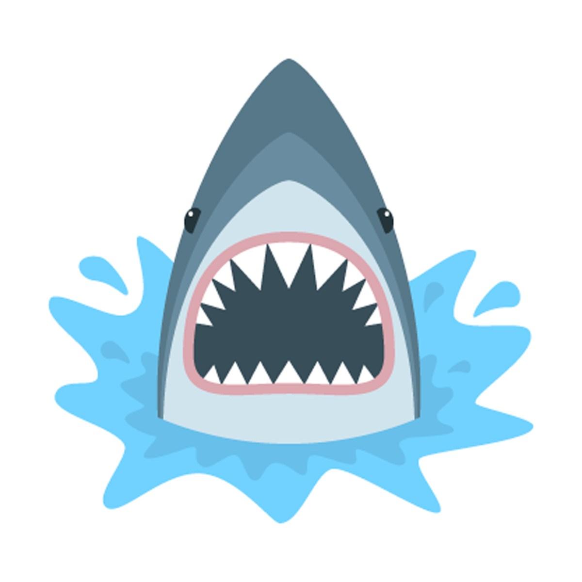 Lawyer bitten by shark endures the inevitable jokes