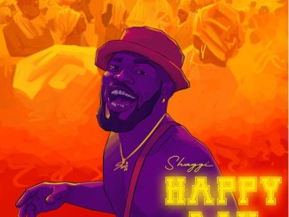 Download Music: Broda Shaggi - Happy Day