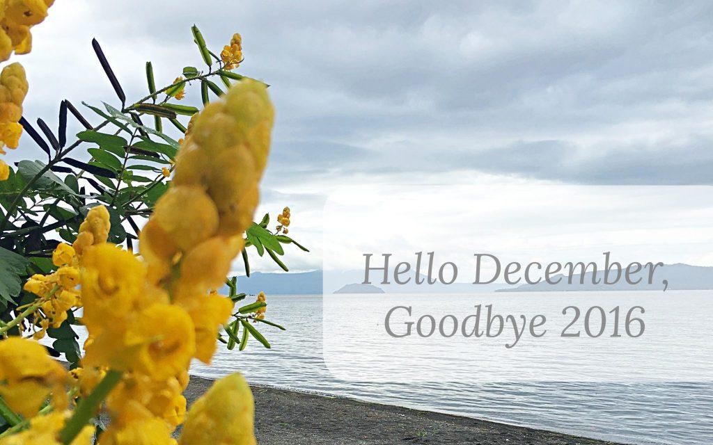 Goodbye 2016