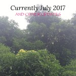 CURRENTLY JULY 2017 …and other updates