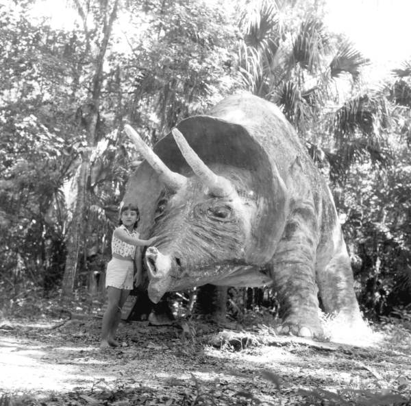 Photo Courtesy of the State Archives of Florida, Florida Memory, 1959