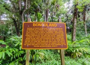 Bongoland | Photo © 2014 Bullet, www.abandonedfl.com