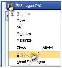 sap-logon-options