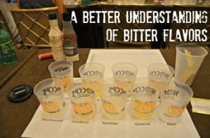 Bitter Flavors Seminar