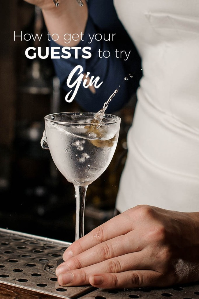 How to Get a Vodka Drinker to Try Gin