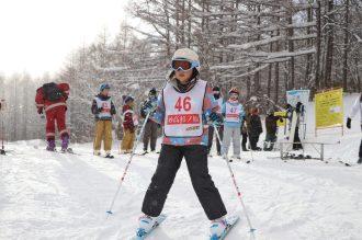 ski233