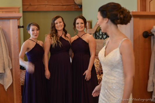 kicking-horse-mountain-wedding-katie-myles3-22