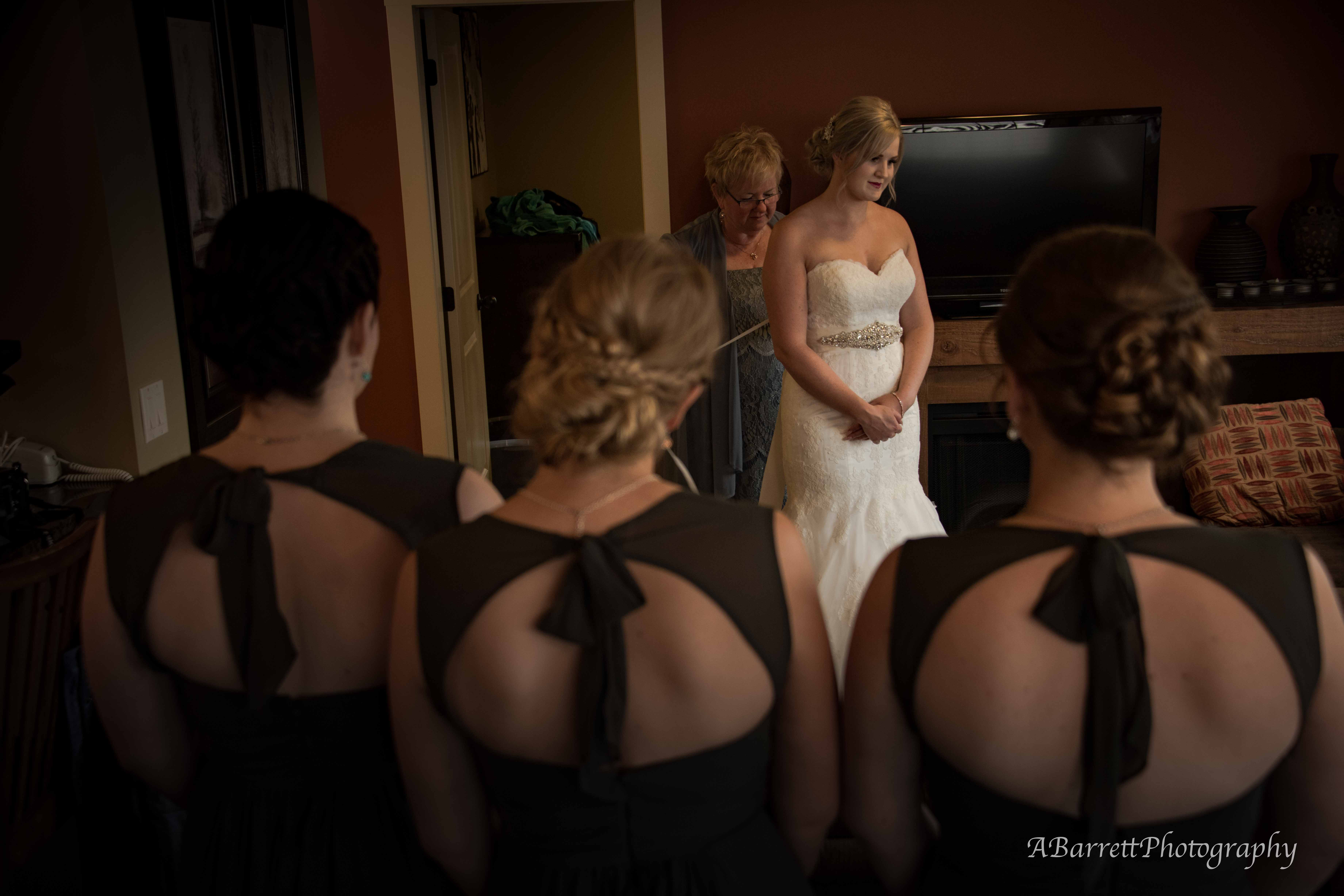 kicking_horse_mountain_wedding