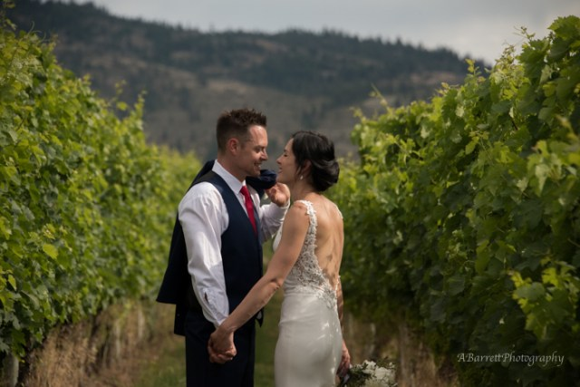vineyard_wedding_okanagan_bc_photography