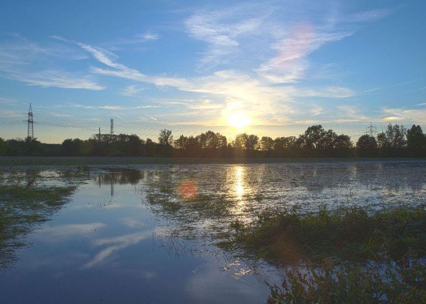 Überschwemmung 2013