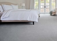 Premier Stainmaster - Abbey Carpet & Floor