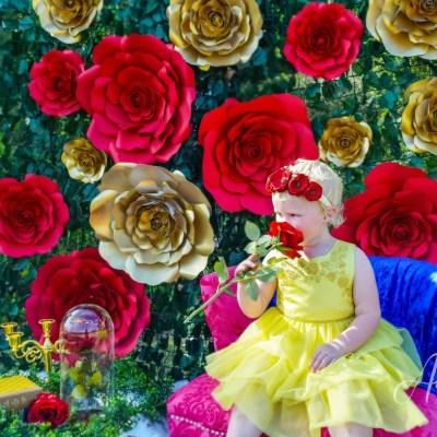 Enchanting Beauty & the Beast Ideas