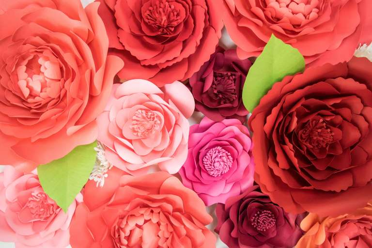 How to Make Giant Poppy Paper Flowers