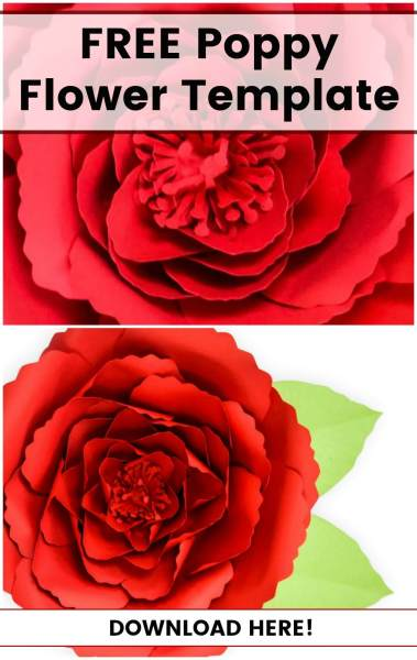 How to Make Giant Poppy Paper Flowers: Free Paper Flower Templates