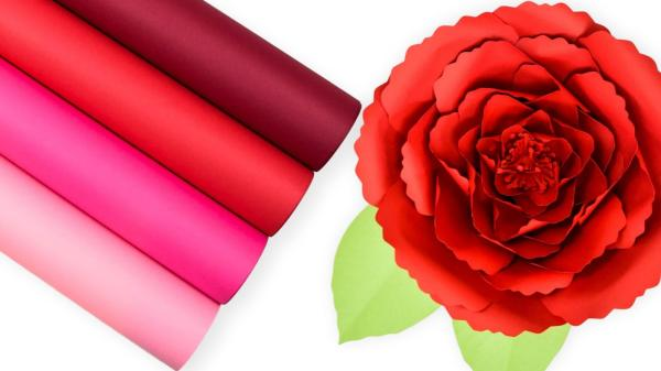 Free poppy paper flower template.