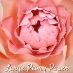 Large Paper Peonies DIY Tutorial