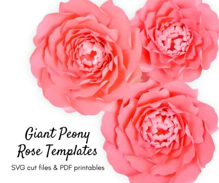How to Make Large Paper Peonies: Templates and Tutorial. Follow this step by step paper flower tutorial to learn how to create beautiful paper peony flowers.