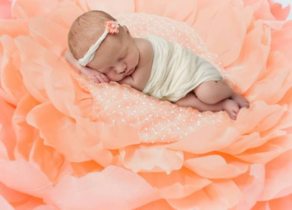 How to make your own newborn flower nest photo prop with crepe paper.