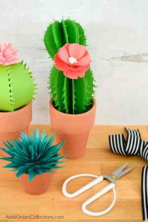 How to make fero, aloe vera, and prickly pear paper cacti.