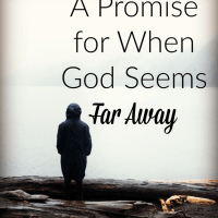 A Promise for When God Seems Far Away