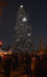 Downtown Christmas Tree lighting a family affair ...