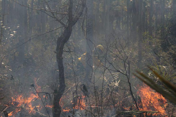 Un bombero combate uno de los focos de incendio registrado en zona de la Triple Frontera.