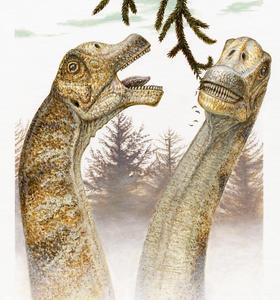 Así era la cabeza de un dinosaurio