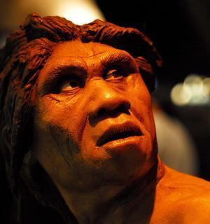 Los neandertales no convivieron con el homo sapiens en la Península
