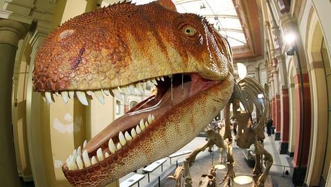 Los dinosaurios, más altos de lo que creíamos