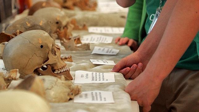 Los forenses descifran la historia de Bílbilis a través de los huesos