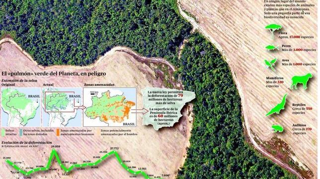 Brasil aprueba una ley que pone en riesgo 700.000 kilómetros de Amazonia