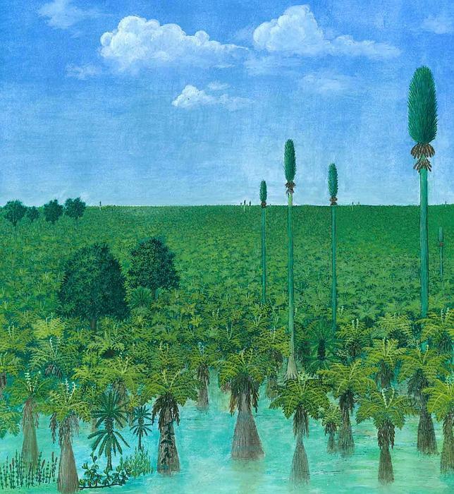 Así era un bosque hace 300 millones de años