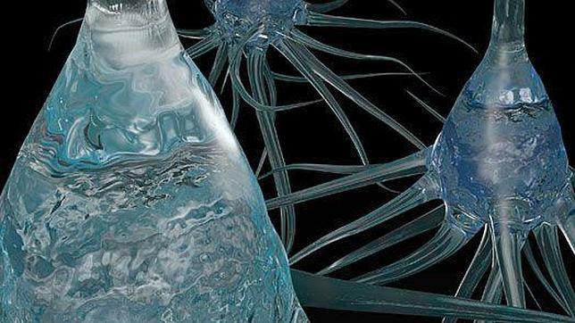 Crean un «cable» que conecta el cerebro a las máquinas