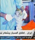 Irán envía un mono al espacio